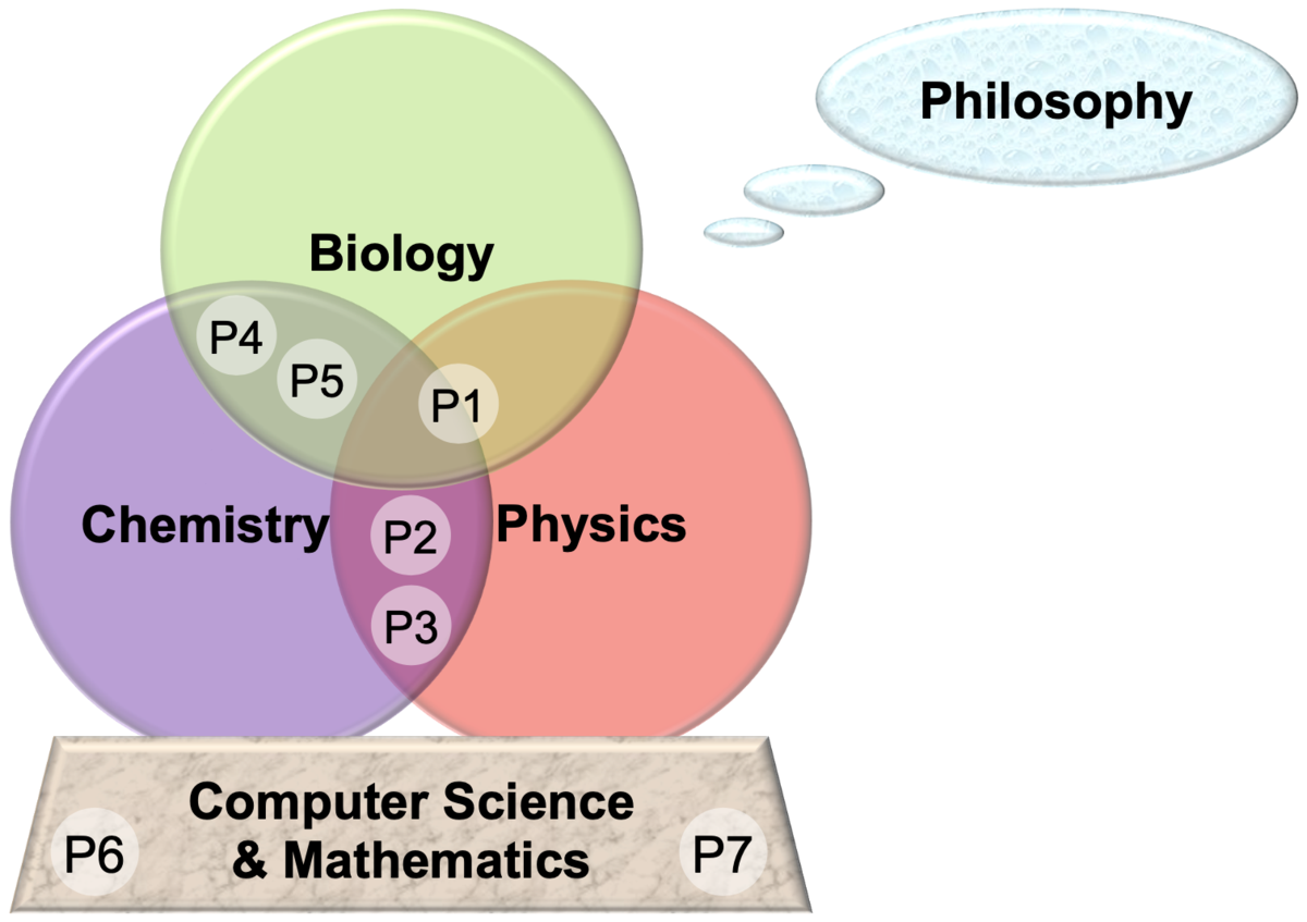 Interdisciplinary interactions between chemistry, biology, physics, mathematics, computer science and philosophy in projects P1-7.